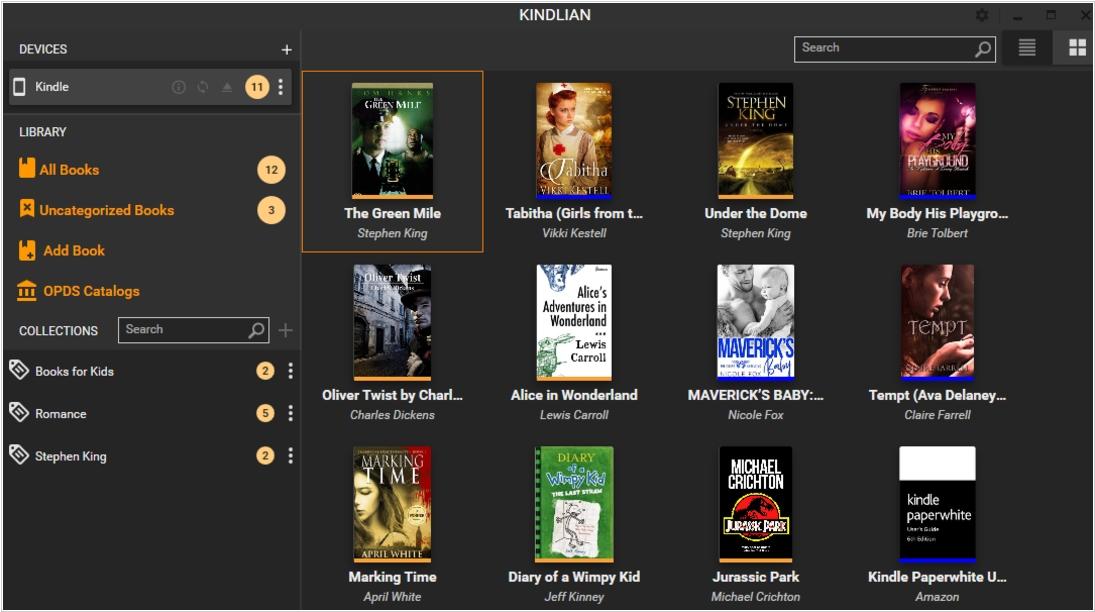 Kindlian alternatives  Top 10 eBook Organizers